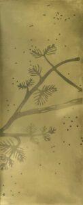 decorative-blackened-brass--nature-shades specialfinish